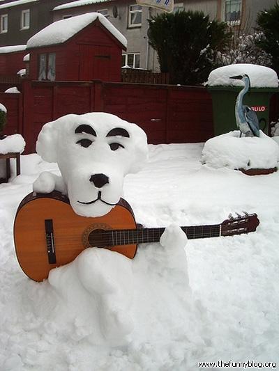 Funny-Snow-Dog