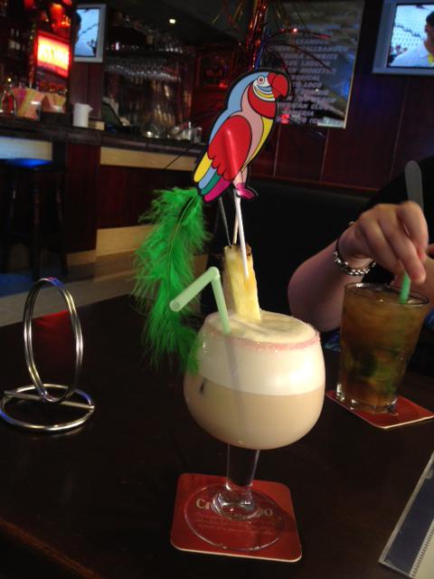 Eddie the parrot!