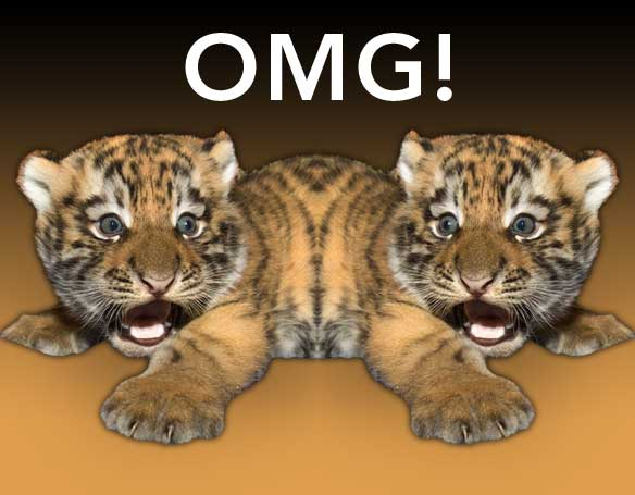 omg-tiger-two-js070110